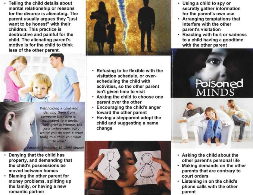 What Does an Alienated Child Look Like & How to Deal with Alienation2 - 2016