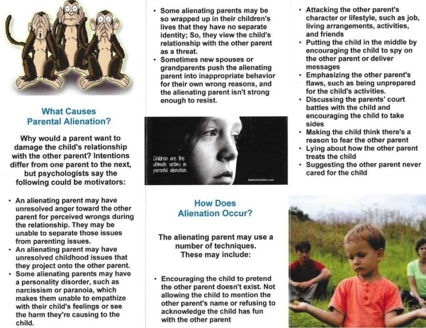 What Does an Alienated Child Look Like & How to Deal with Alienation3 - 2016