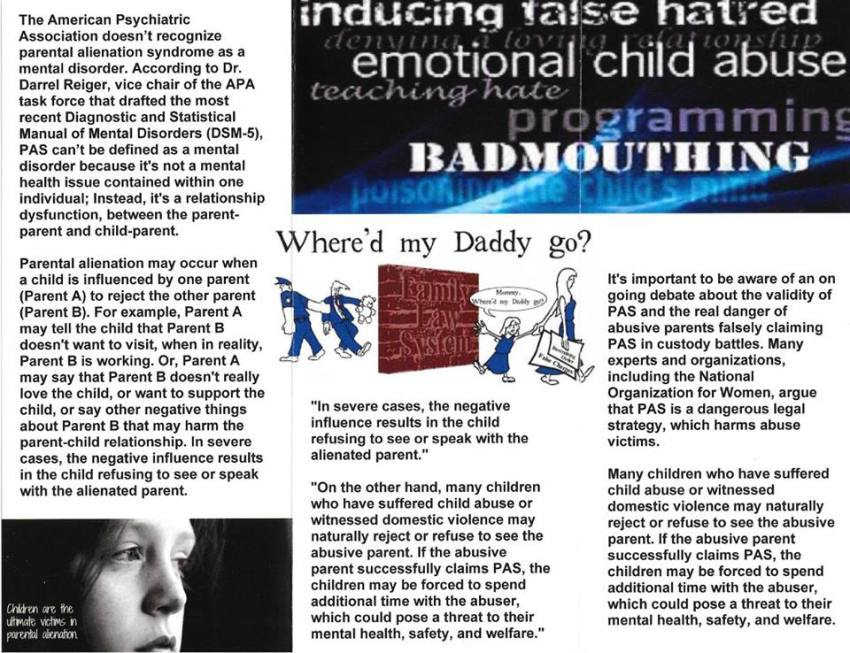 What Does an Alienated Child Look Like & How to Deal with Alienation4 - 2016