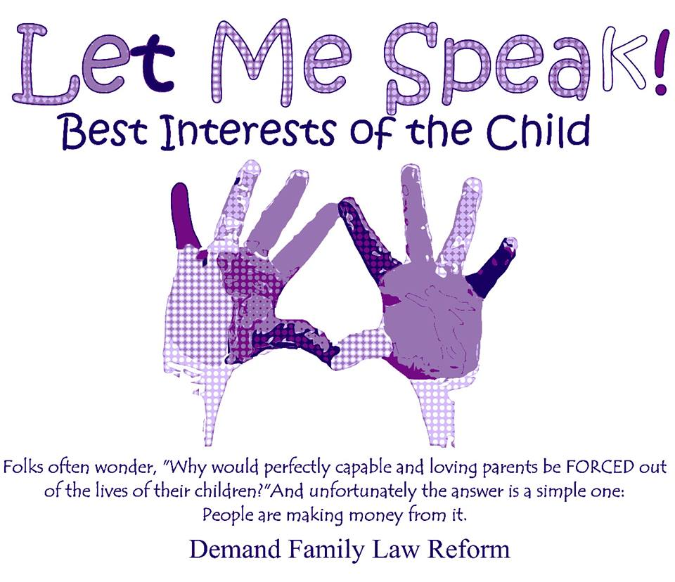 """Confused About What """"best Interests Of The Child"""" Means"""