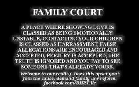 Dysfunctional Family Courts 1 - 2015